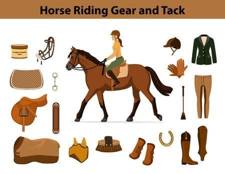 Horse Riding Gears