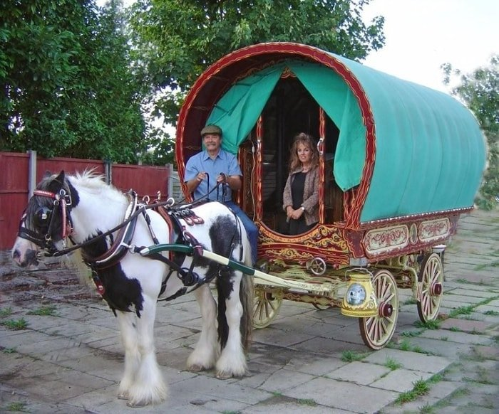 Gypsy Vanner Caravan