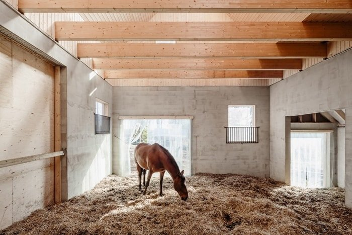 Floor of a Stable