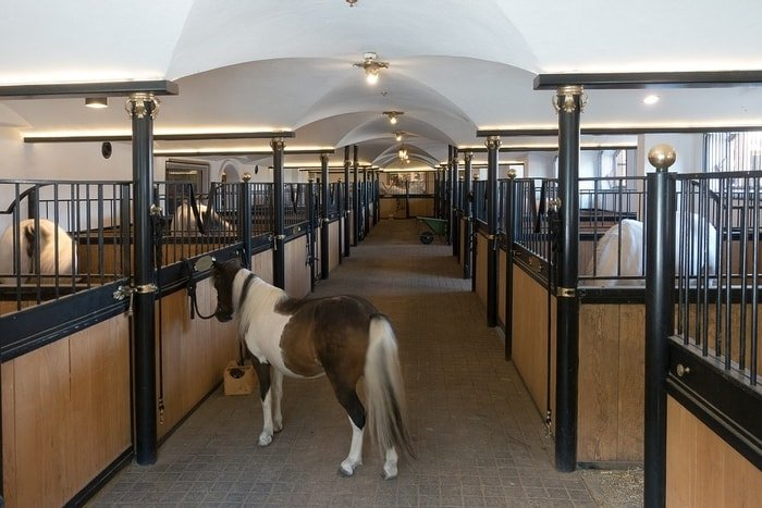 Width of Equine Stable