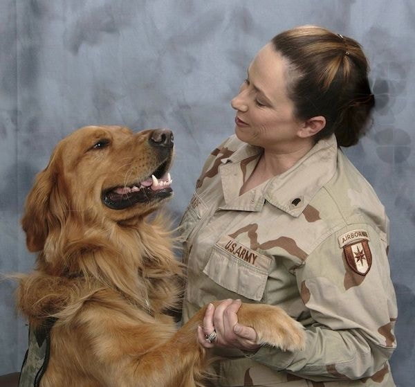 War or Warrior Dog Breeds