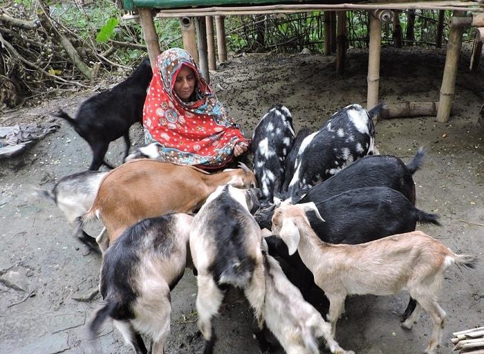 Women Employment of Bangladesh