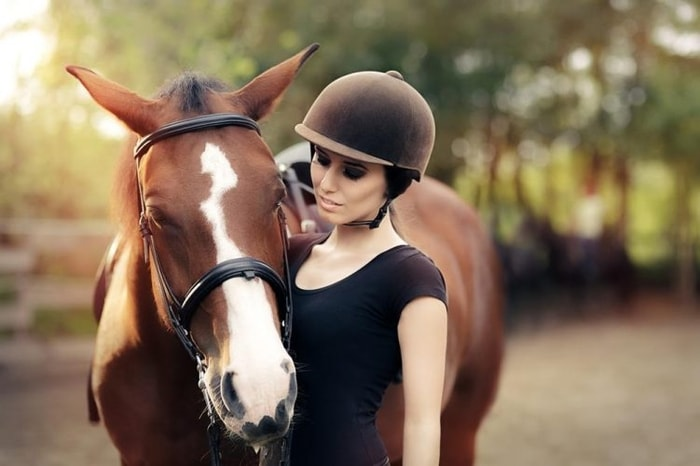 Care of Horse During Training