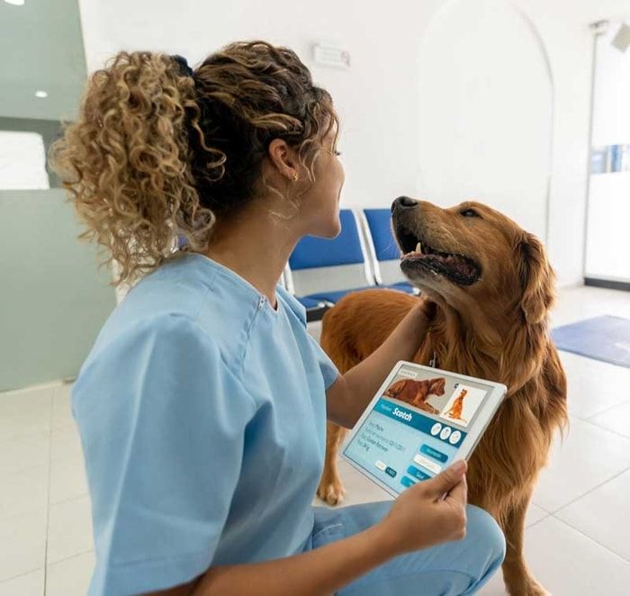 Treatment of Chondrosarcoma in Dogs